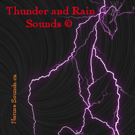 Thunder and Rain Sounds