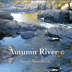 Autumn River and running water sounds
