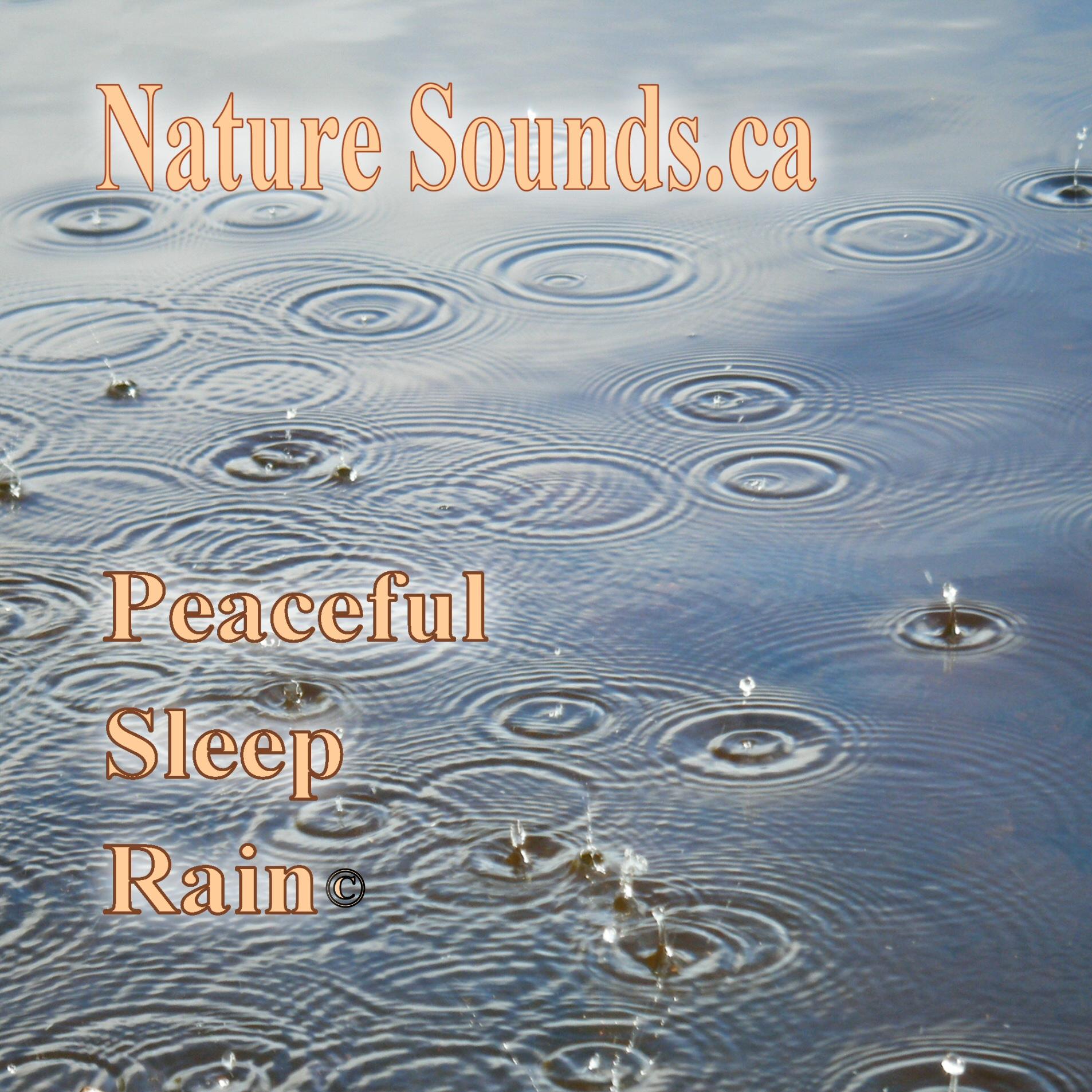 Peaceful Sleep Rain Cd
