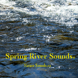The sounds of the running water of a river